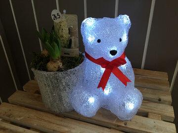 compositie teddy beer met led verlichting met hyacint