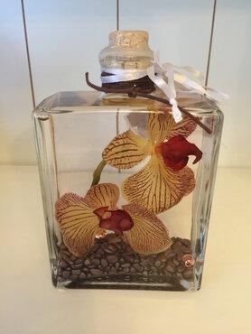 Oliekaars capri orchidee oker 500ml